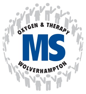 MS Logo-1